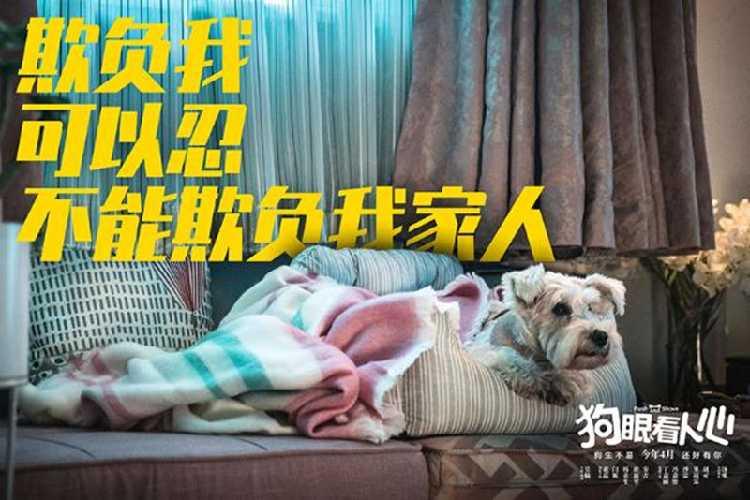 19.9元折扣电影 -狗眼看人心